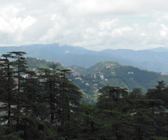 Stunning view of the Tara Devi Hill side across the Majestic Valley